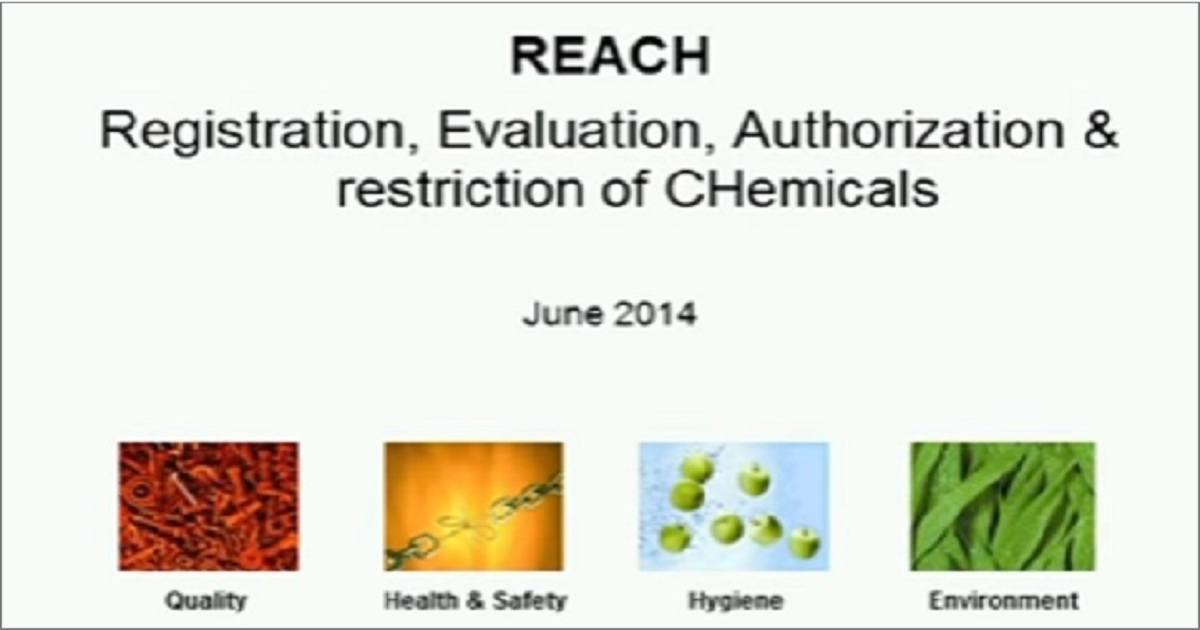 """How REACH is Affecting the Chemical Industry"""" Webinar"""