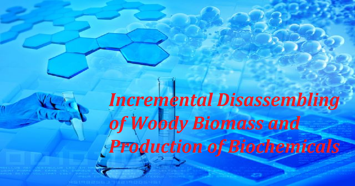 Incremental Disassembling of Woody Biomass and Production of Biochemicals