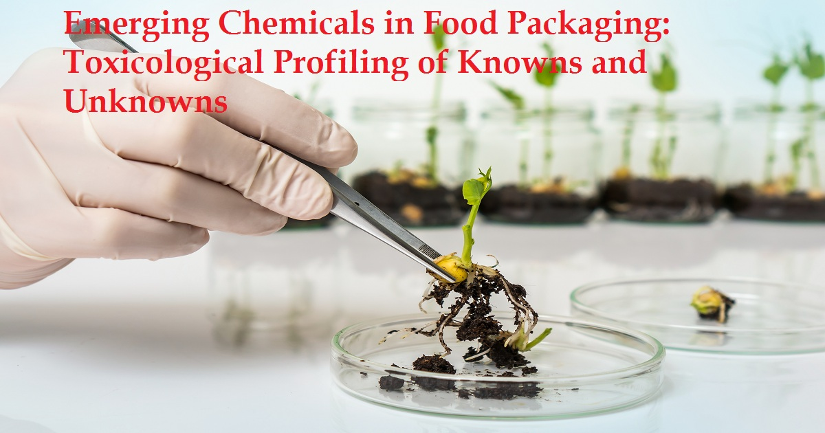 Emerging Chemicals in Food Packaging: Toxicological Profiling of Knowns and Unknowns
